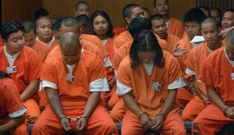 Suspected gang members face firearm, drug charges - News